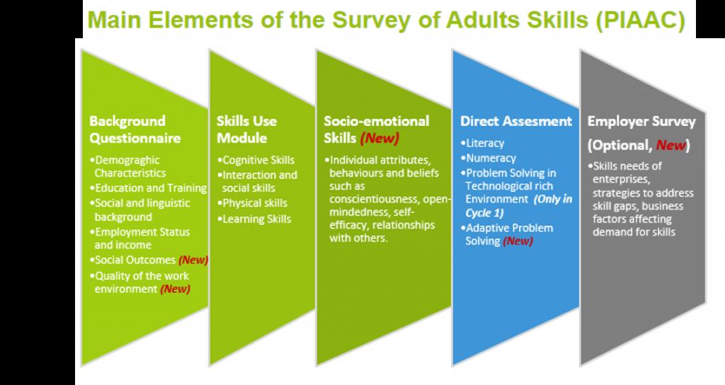 Principais Elementos da Pesquisa de Competências de Adultos